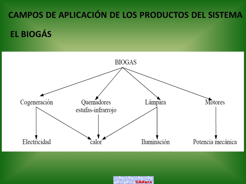 CAMPOS DE APLICACIÓN DE LOS PRODUCTOS DEL SISTEMA