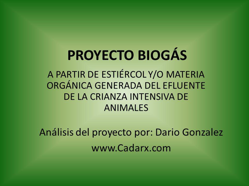 Análisis del proyecto por: Dario Gonzalez
