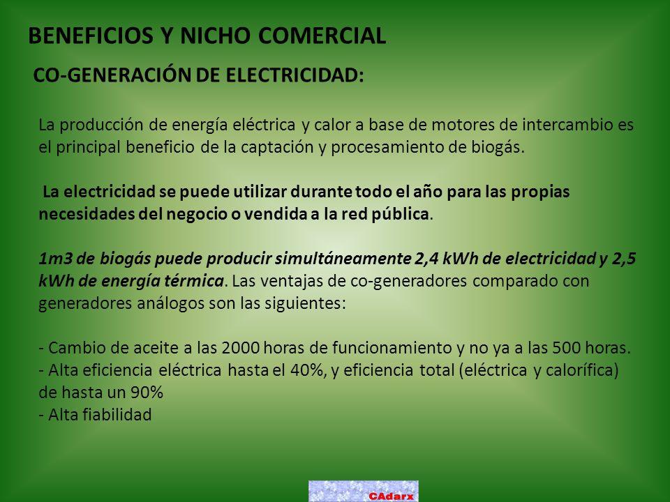 BENEFICIOS Y NICHO COMERCIAL