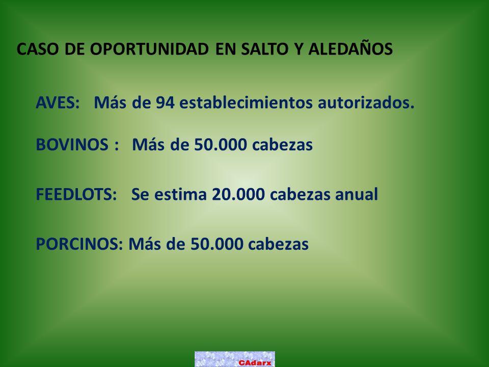 CASO DE OPORTUNIDAD EN SALTO Y ALEDAÑOS