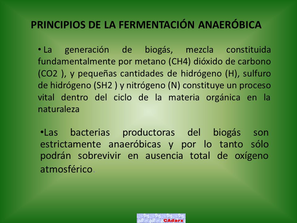 PRINCIPIOS DE LA FERMENTACIÓN ANAERÓBICA