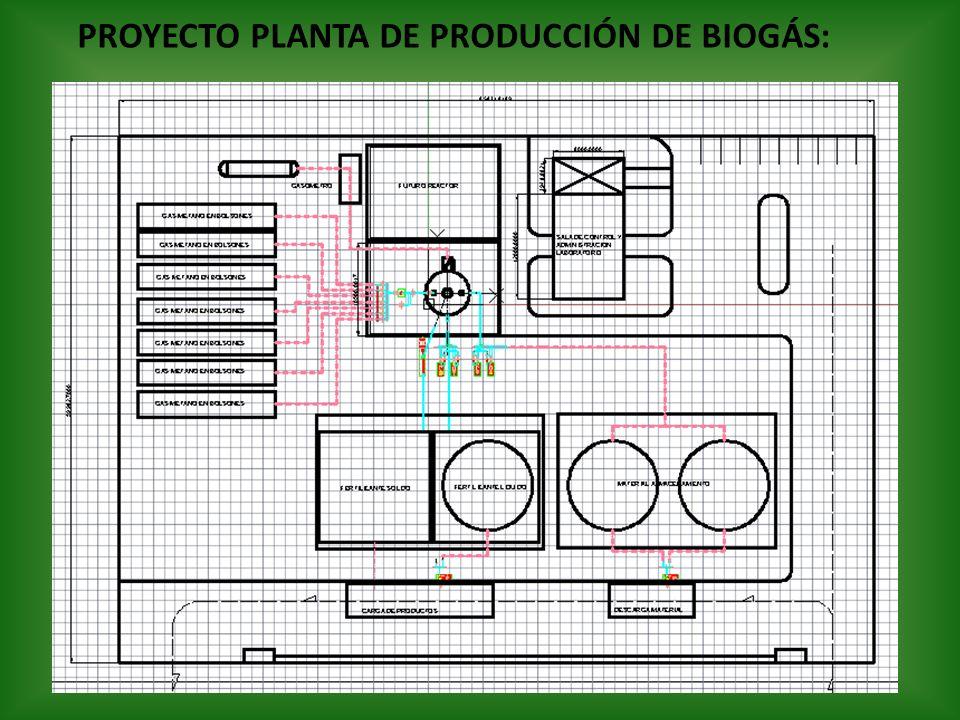 PROYECTO PLANTA DE PRODUCCIÓN DE BIOGÁS: