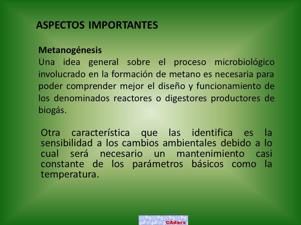 ASPECTOS IMPORTANTES Metanogénesis.