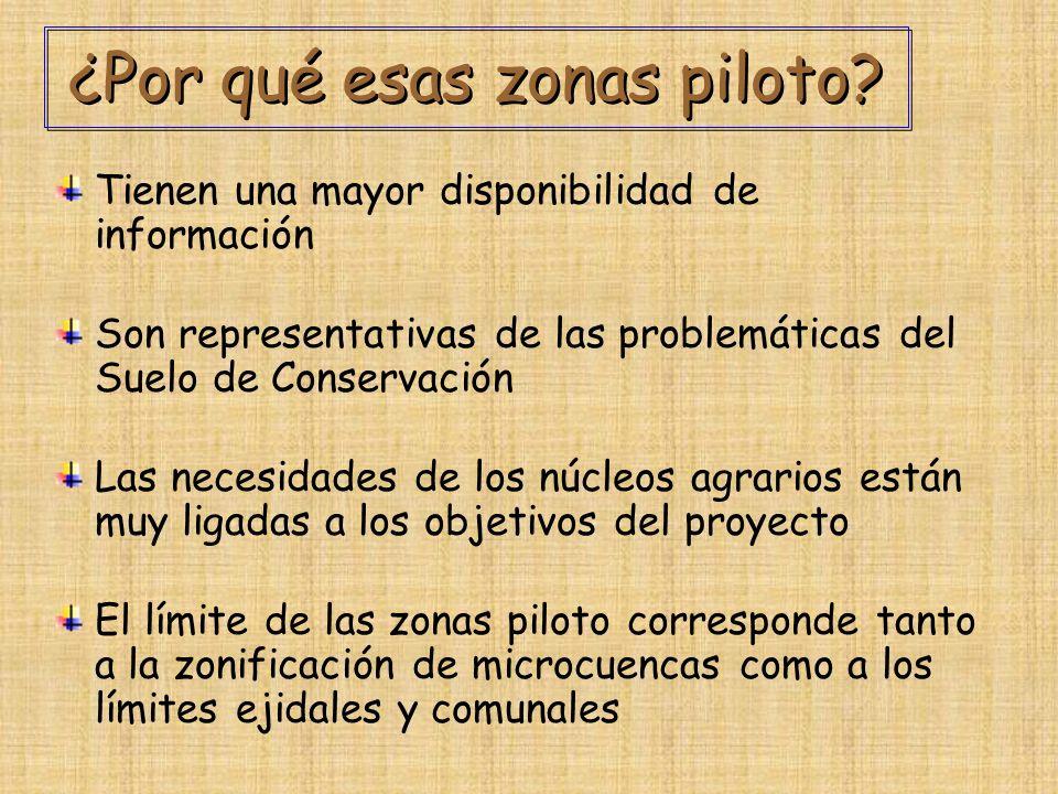 ¿Por qué esas zonas piloto
