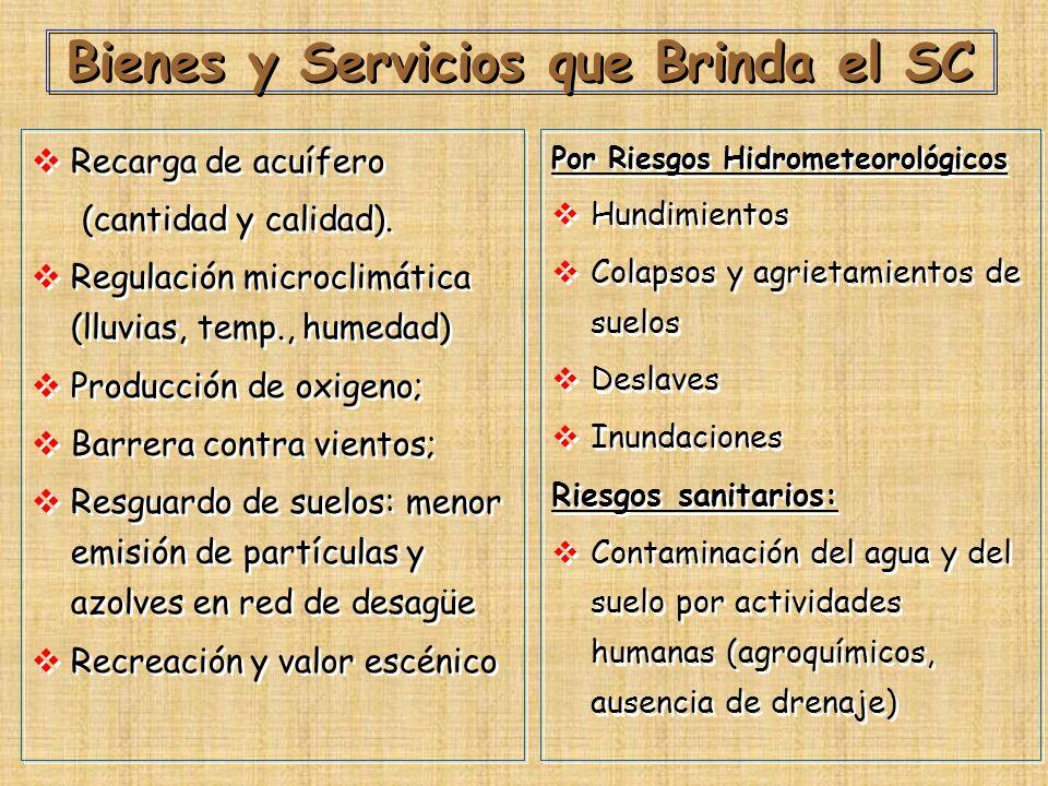 Bienes y Servicios que Brinda el SC