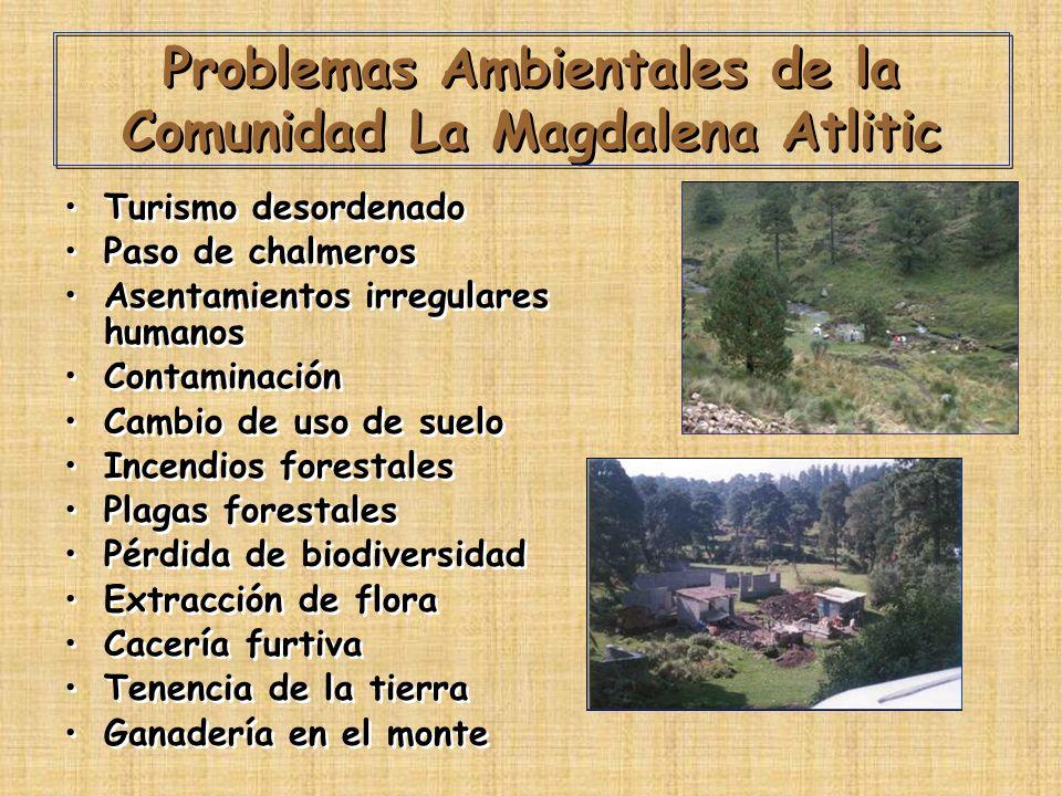 Problemas Ambientales de la Comunidad La Magdalena Atlitic