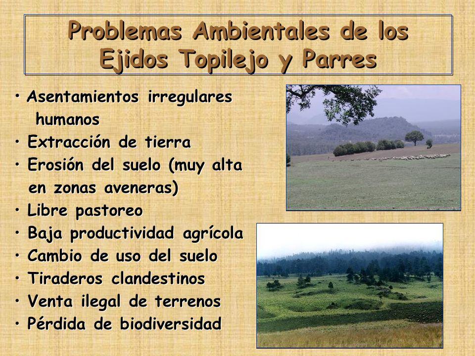 Problemas Ambientales de los Ejidos Topilejo y Parres