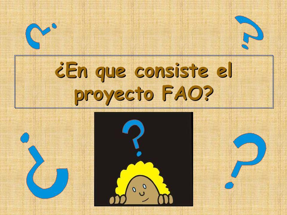 ¿En que consiste el proyecto FAO