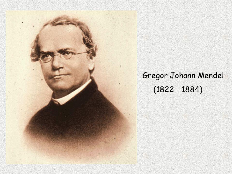 Gregor Johann Mendel (1822 - 1884)
