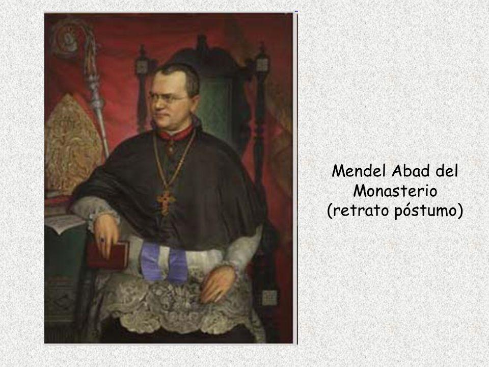 Mendel Abad del Monasterio
