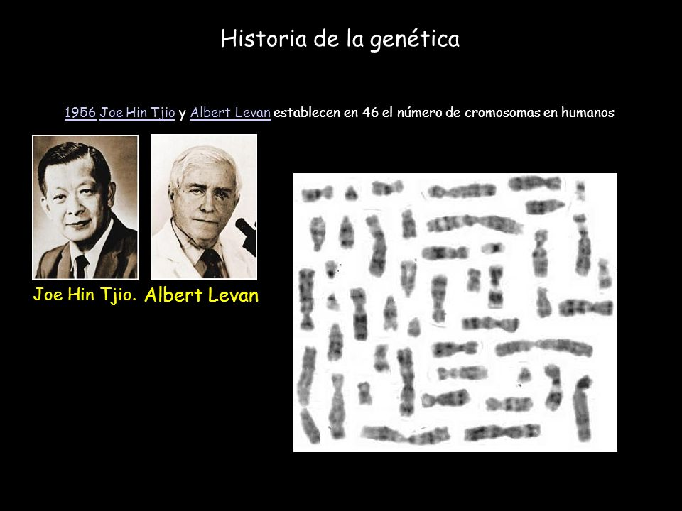 Historia de la genética