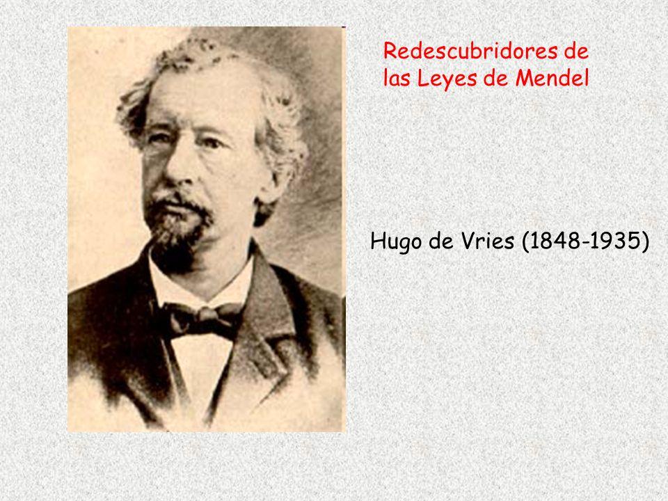 Redescubridores de las Leyes de Mendel
