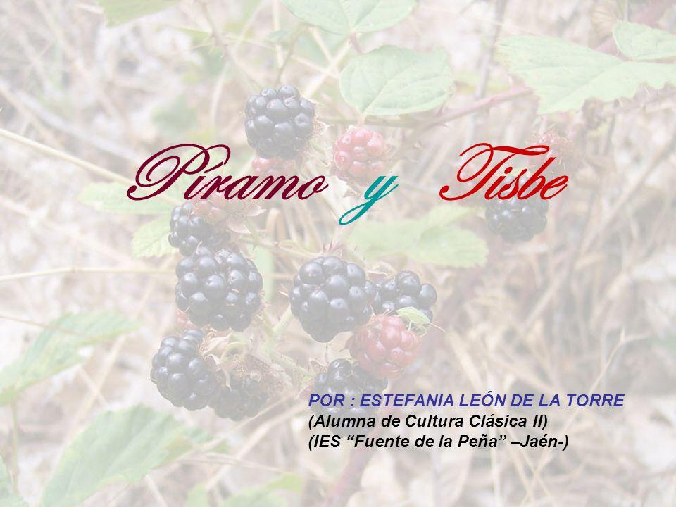 Píramo y Tisbe POR : ESTEFANIA LEÓN DE LA TORRE