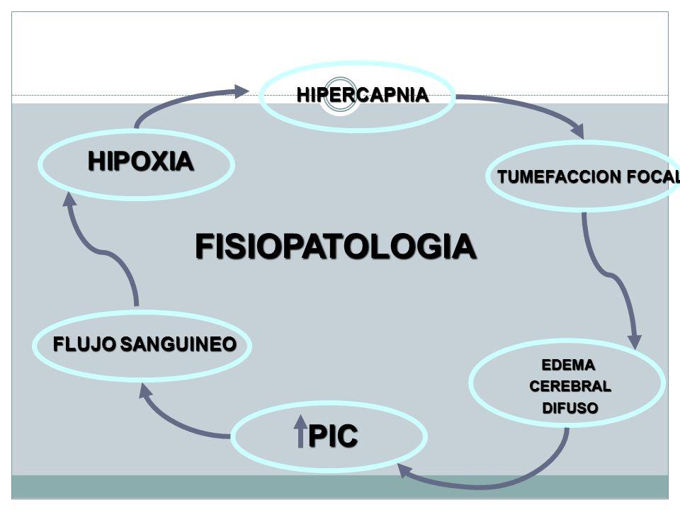 FISIOPATOLOGIA PIC HIPOXIA HIPERCAPNIA FLUJO SANGUINEO