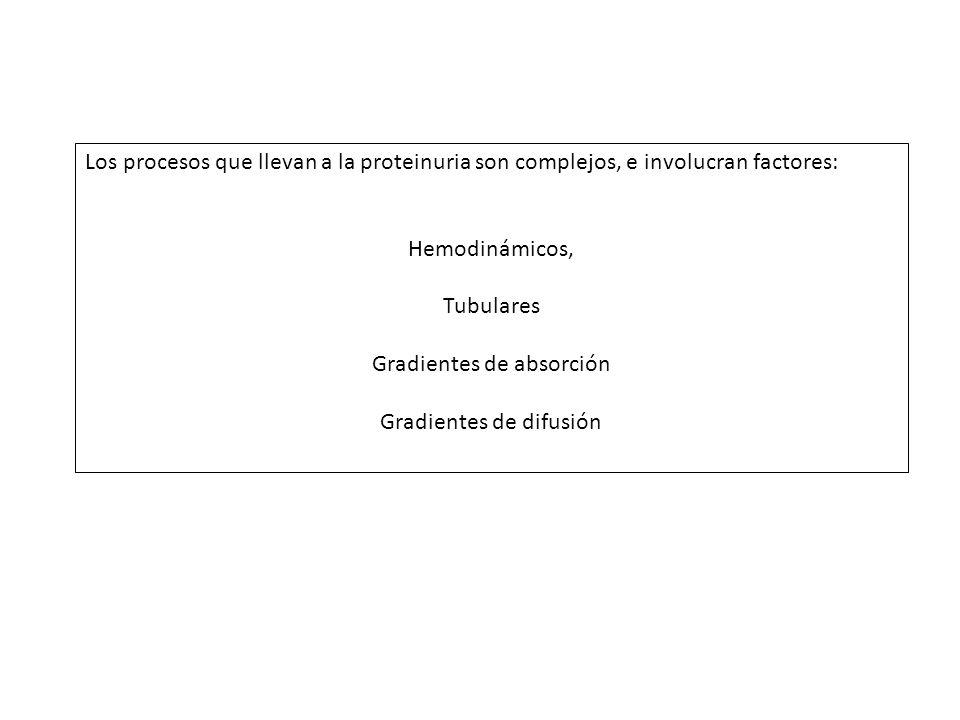 Gradientes de absorción Gradientes de difusión