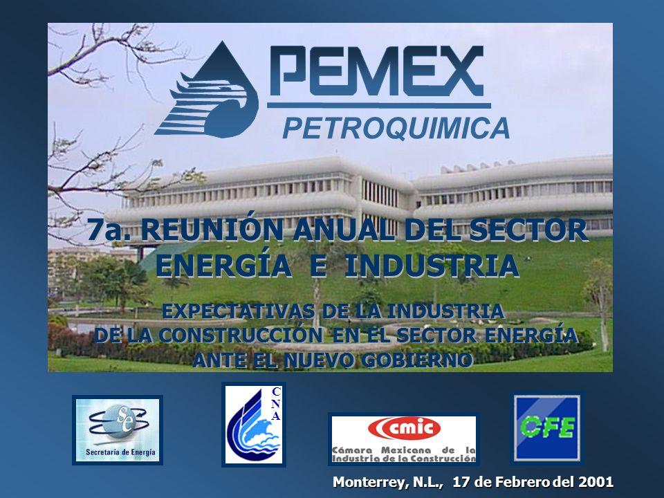 7a. REUNIÓN ANUAL DEL SECTOR ENERGÍA E INDUSTRIA