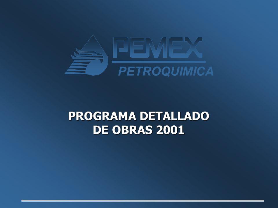 PETROQUIMICA PROGRAMA DETALLADO DE OBRAS 2001