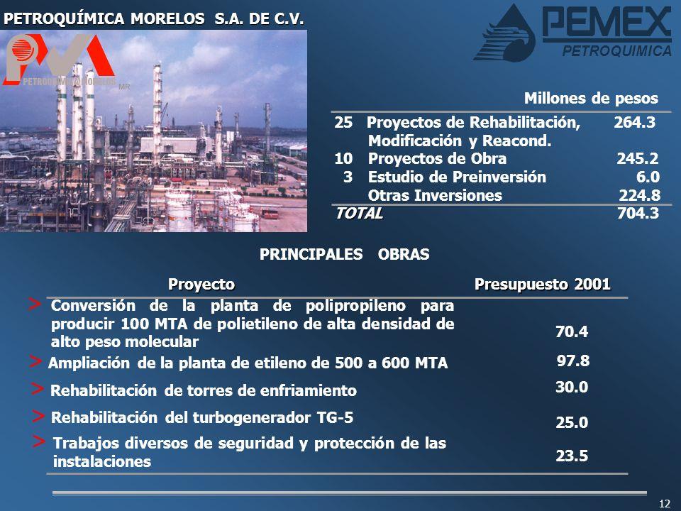 PETROQUÍMICA MORELOS S.A. DE C.V.