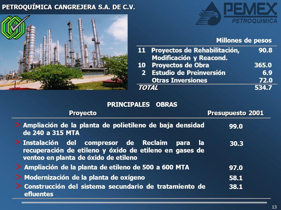 PETROQUÍMICA CANGREJERA S.A. DE C.V.