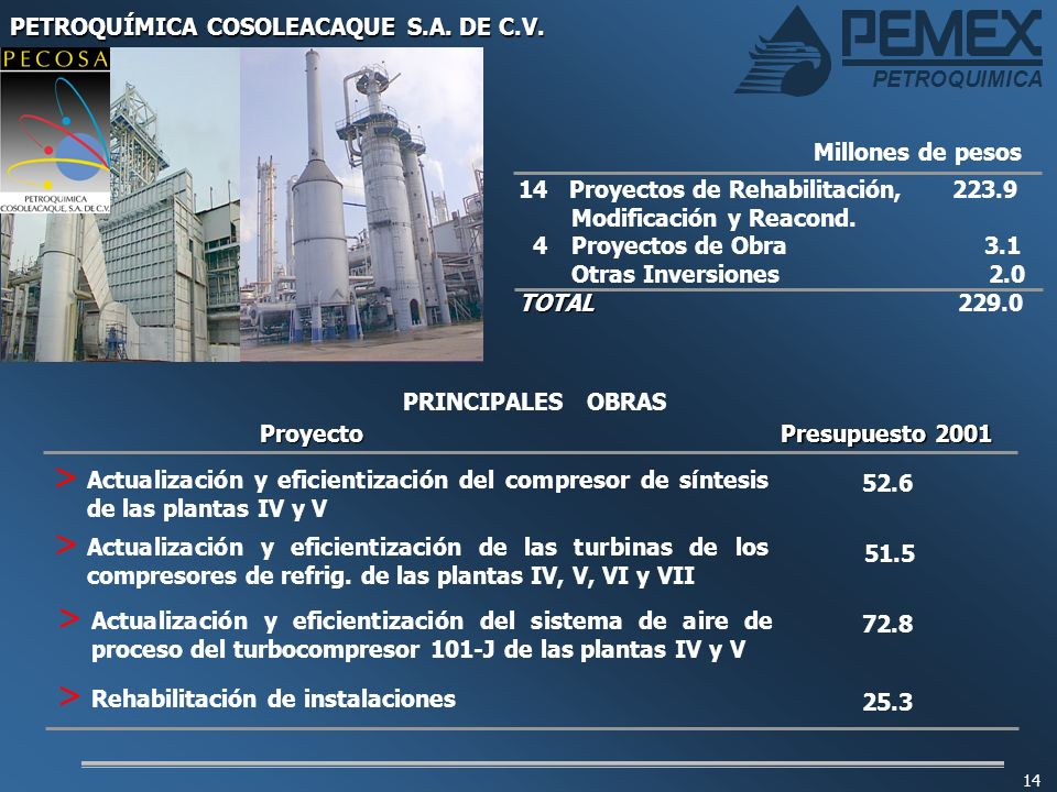 PETROQUÍMICA COSOLEACAQUE S.A. DE C.V.