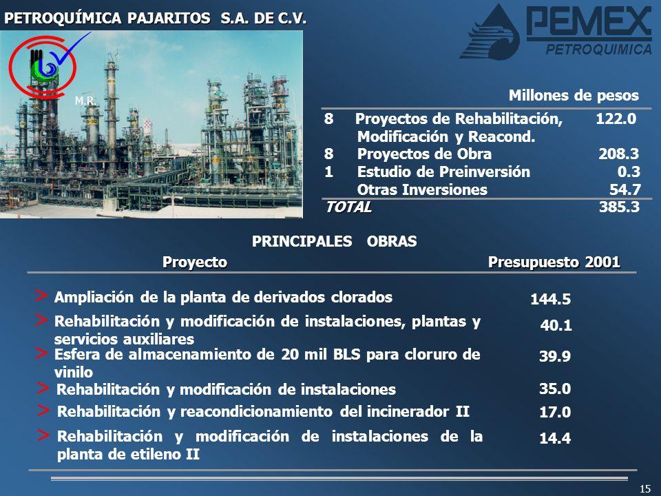 PETROQUÍMICA PAJARITOS S.A. DE C.V.