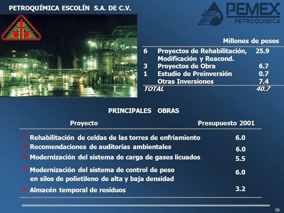 PETROQUÍMICA ESCOLÍN S.A. DE C.V.