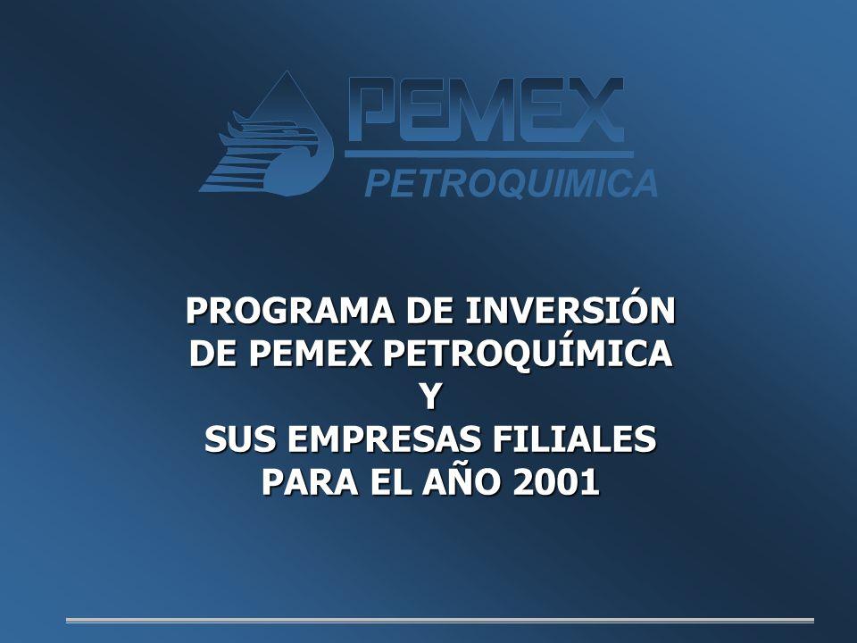 PETROQUIMICA PROGRAMA DE INVERSIÓN DE PEMEX PETROQUÍMICA Y