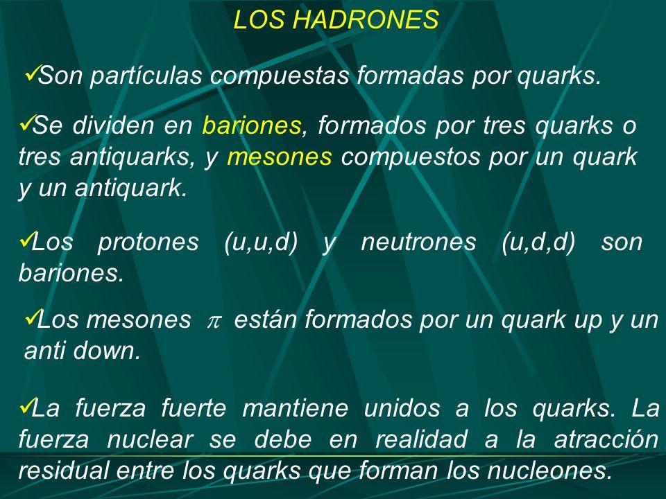 LOS HADRONES Son partículas compuestas formadas por quarks.