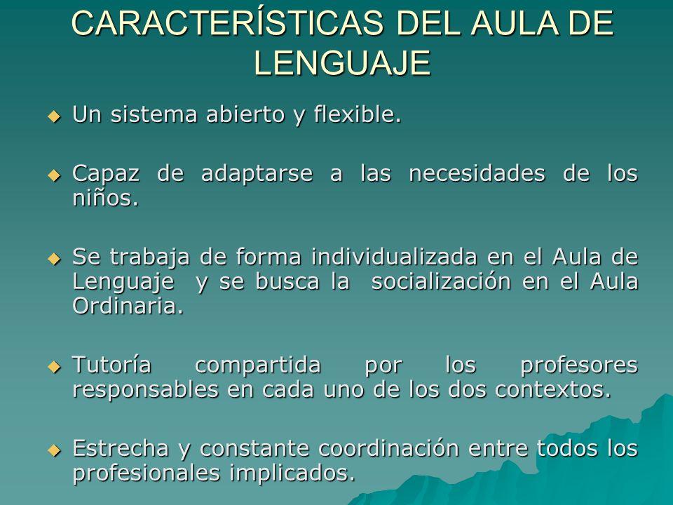 CARACTERÍSTICAS DEL AULA DE LENGUAJE