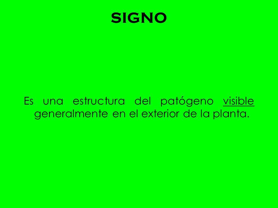 SIGNO Es una estructura del patógeno visible generalmente en el exterior de la planta.