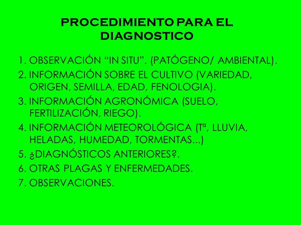 PROCEDIMIENTO PARA EL DIAGNOSTICO