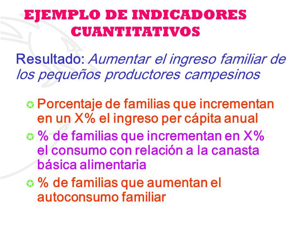 EJEMPLO DE INDICADORES CUANTITATIVOS