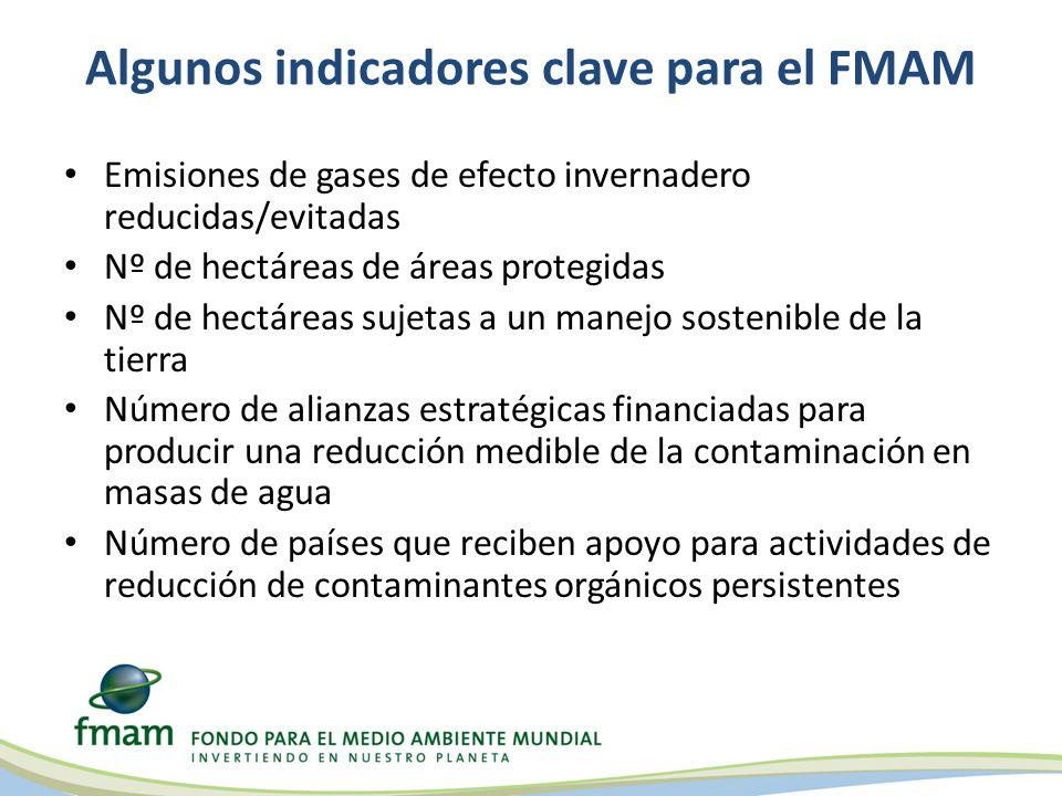 Algunos indicadores clave para el FMAM