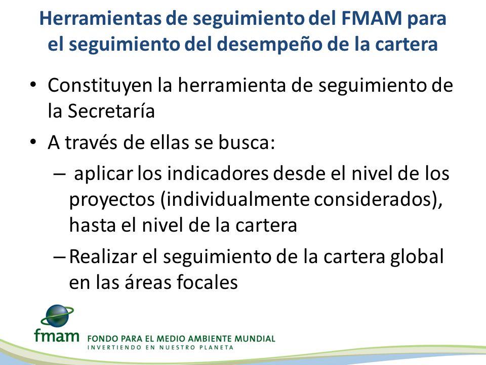 Herramientas de seguimiento del FMAM para el seguimiento del desempeño de la cartera