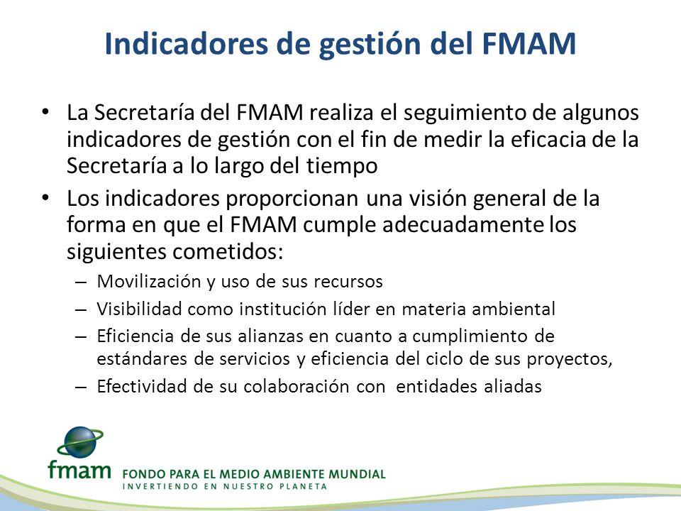 Indicadores de gestión del FMAM
