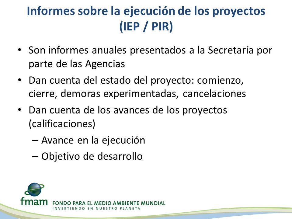Informes sobre la ejecución de los proyectos (IEP / PIR)