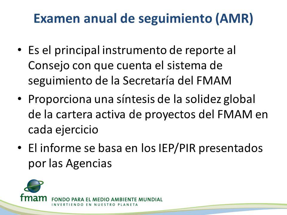 Examen anual de seguimiento (AMR)