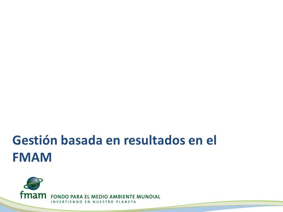 Gestión basada en resultados en el FMAM