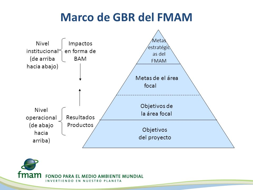 Marco de GBR del FMAM Objetivos del proyecto Metas de el área focal