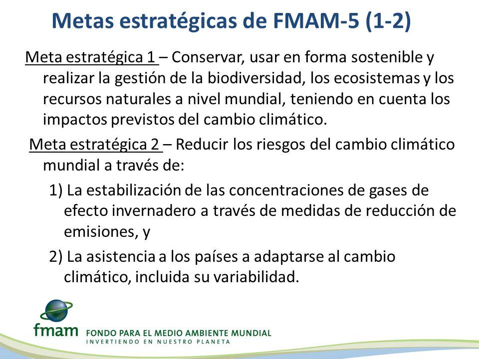 Metas estratégicas de FMAM-5 (1-2)