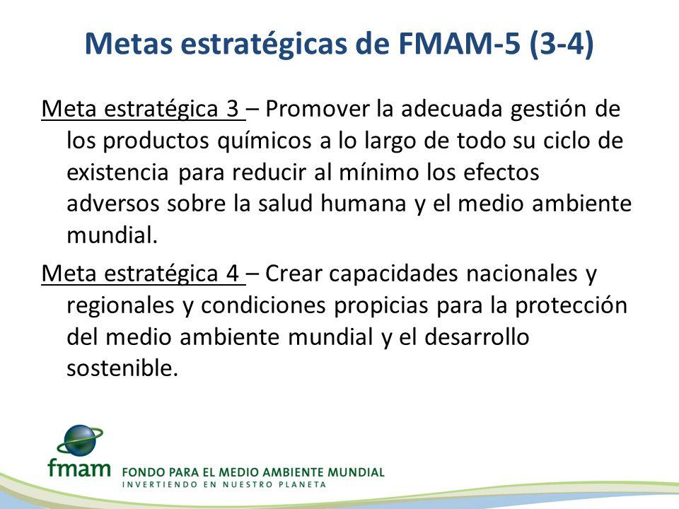 Metas estratégicas de FMAM-5 (3-4)