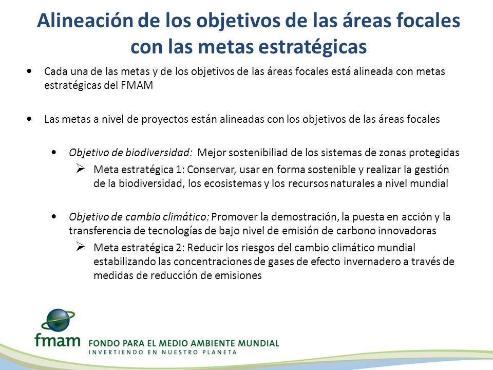 Alineación de los objetivos de las áreas focales con las metas estratégicas