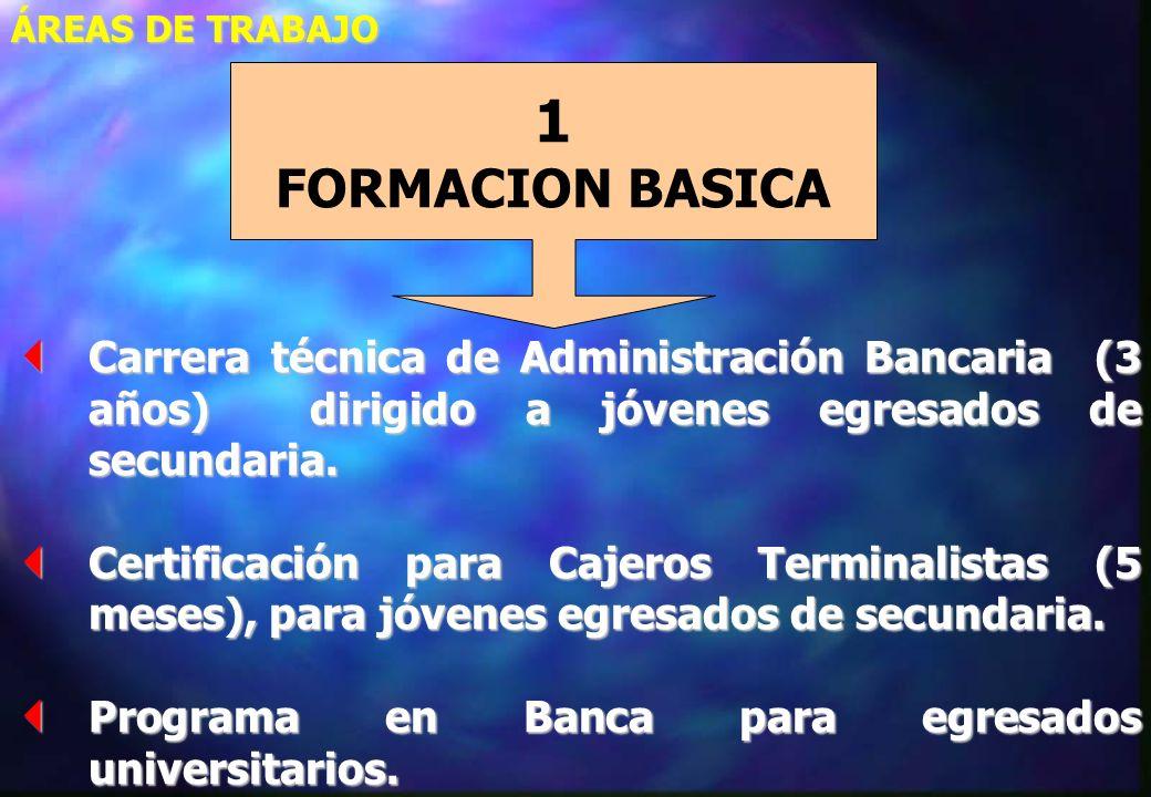 ÁREAS DE TRABAJO 1. FORMACION BASICA. Carrera técnica de Administración Bancaria (3 años) dirigido a jóvenes egresados de secundaria.
