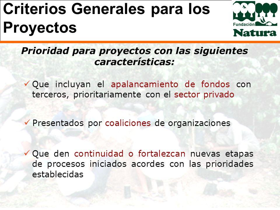 Criterios Generales para los Proyectos