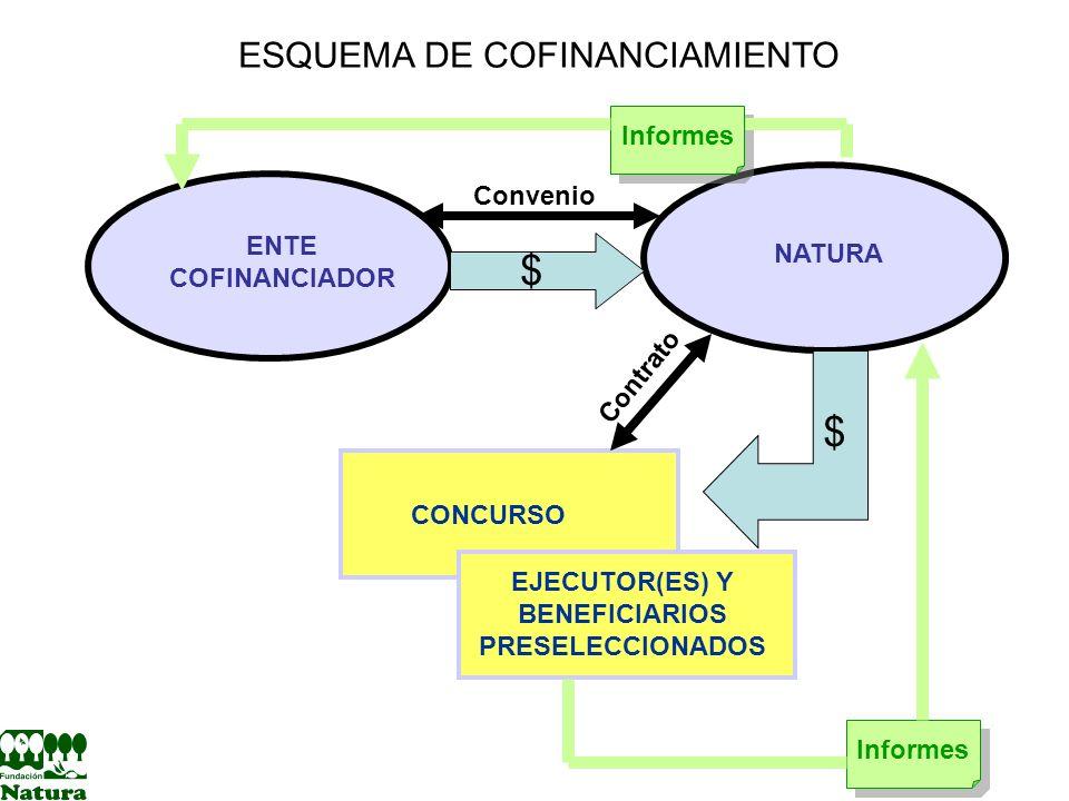 EJECUTOR(ES) Y BENEFICIARIOS PRESELECCIONADOS