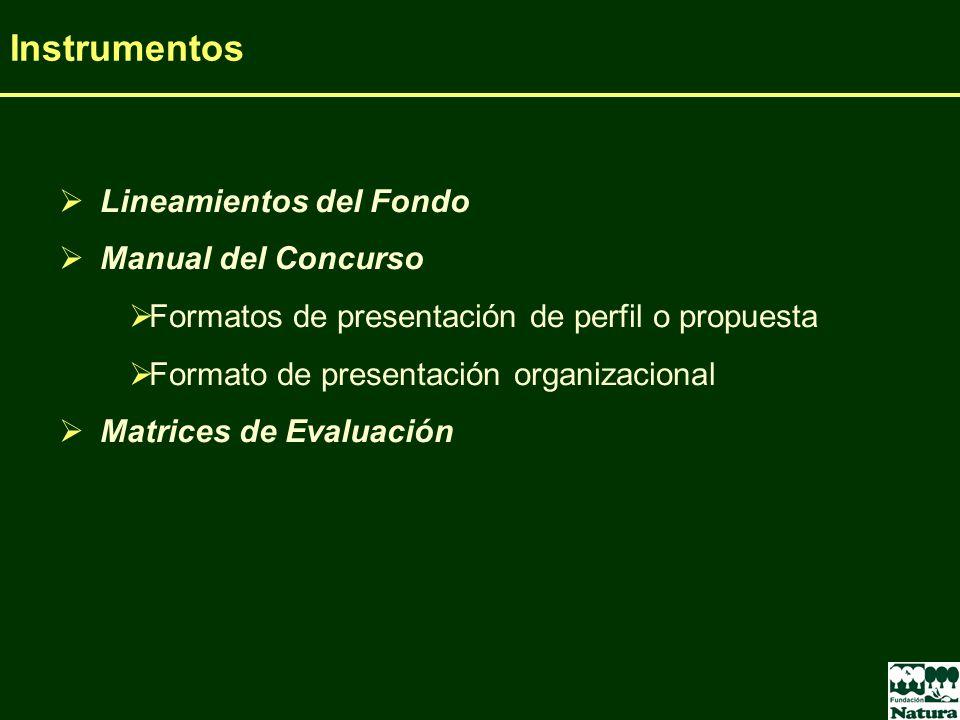 Instrumentos Lineamientos del Fondo Manual del Concurso