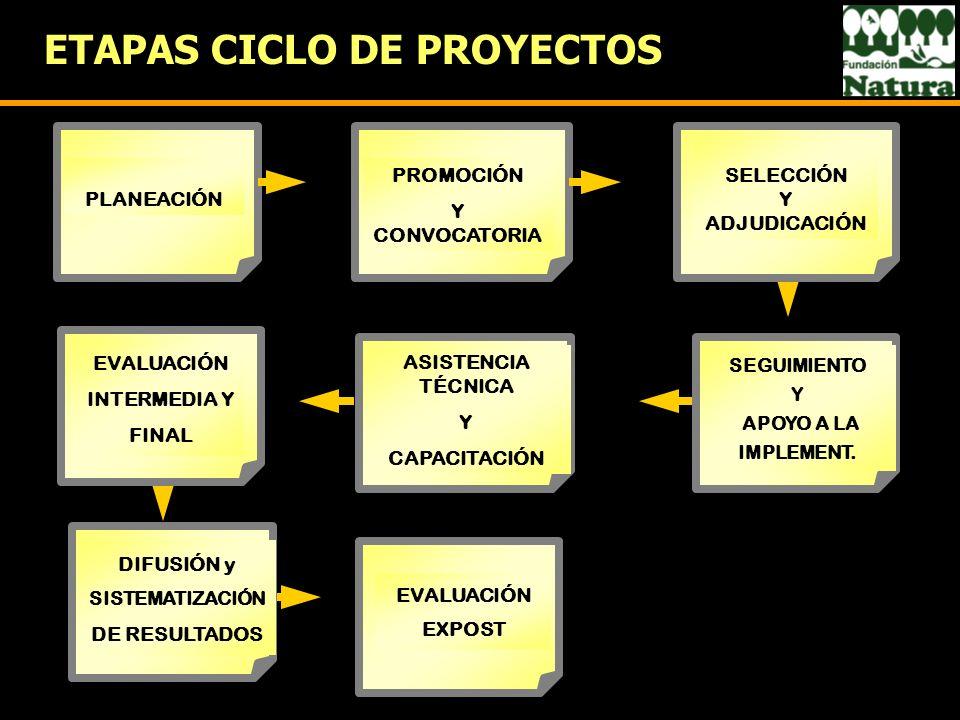 ETAPAS CICLO DE PROYECTOS