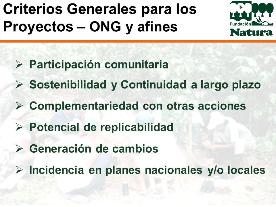 Criterios Generales para los Proyectos – ONG y afines