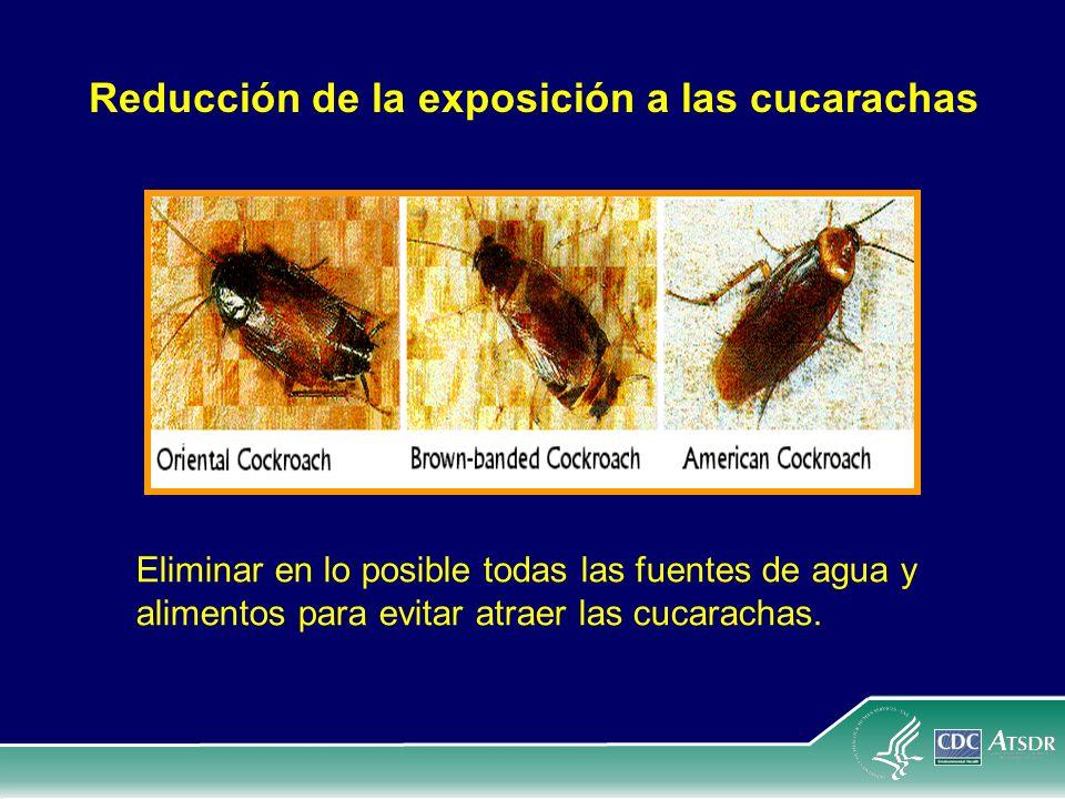 Reducción de la exposición a las cucarachas