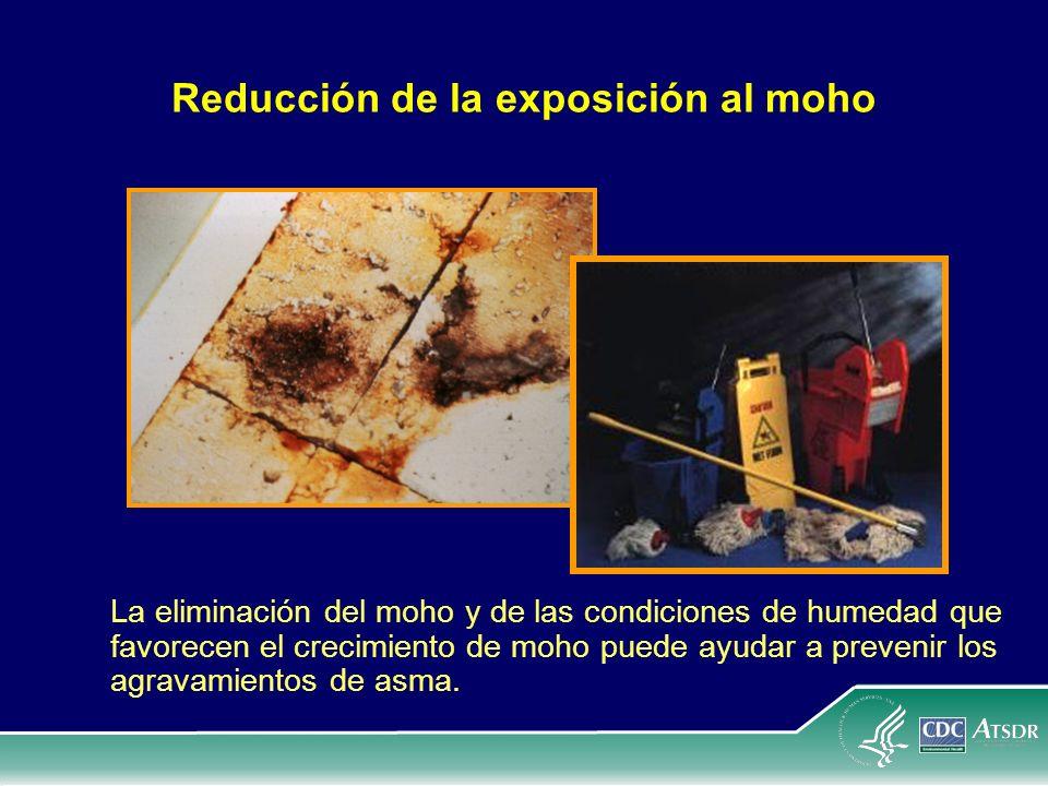 Reducción de la exposición al moho